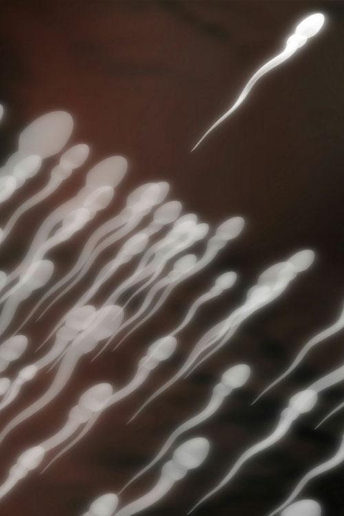 Jessop Fertility, a leading UK hospital based fertility centre